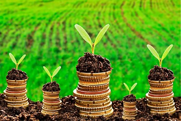 poupanca-rural-para-a-agricultura
